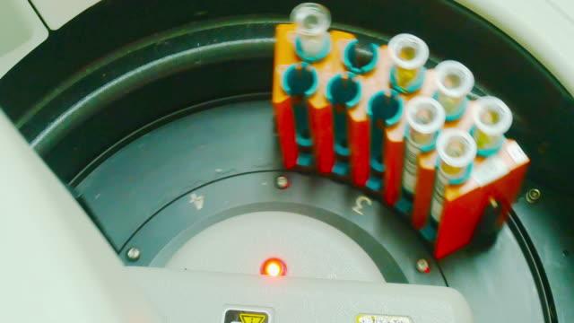 vídeos de stock e filmes b-roll de closeup of blood analysis equipment - tubo