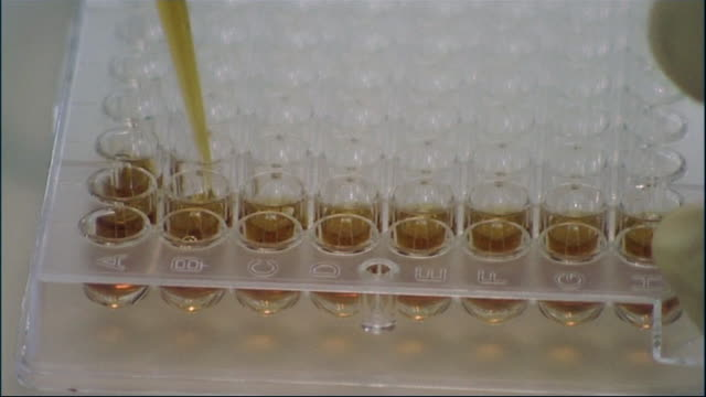 closeup of brown liquid being pipetted into a palette of test tubes in a laboratory during testing for bird flu and h5n1 during an outbreak in 2005 - liquid stock videos & royalty-free footage