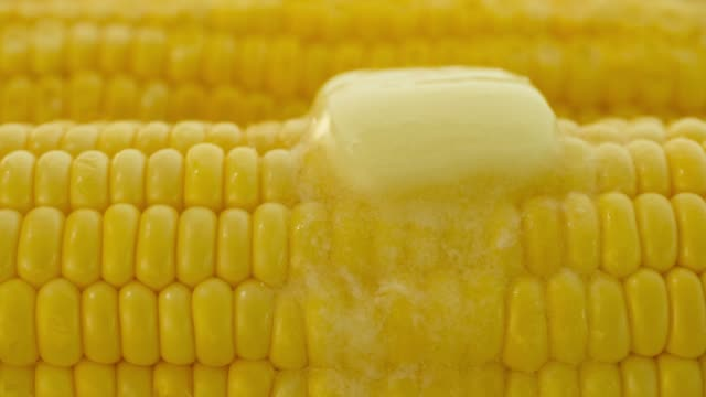 closeup of butter melting on hot corn - corn cob stock videos & royalty-free footage