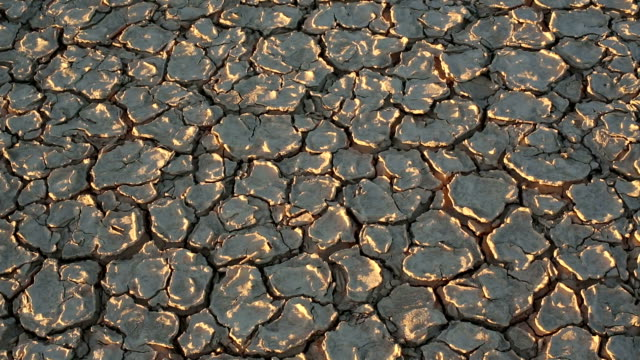close-up of dry cracked mud - lake bed stock videos & royalty-free footage