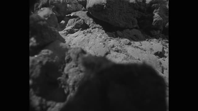 close-up of earthquake in rocky desert - shaking stock videos & royalty-free footage