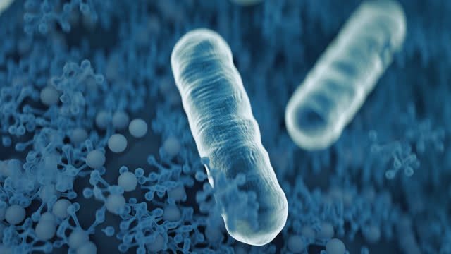 a close-up of escherichia coli inside the body under a microscope. close-up of 3d microscopic blue bacteria. - bacterium stock videos & royalty-free footage