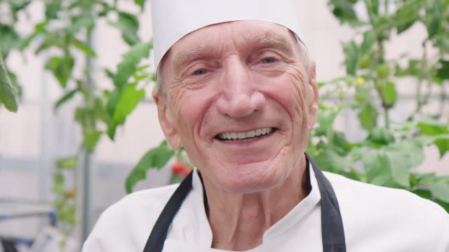 close-up of executive chef at organic garden - chef's hat stock videos & royalty-free footage