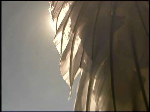 close-up of feathers on wing - animal representation stock videos & royalty-free footage