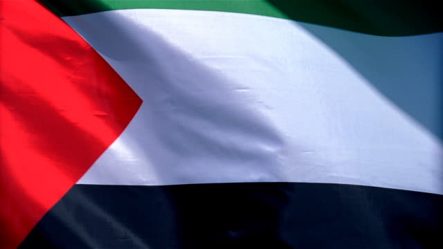 Closeup of flag of Palestine waving in wind