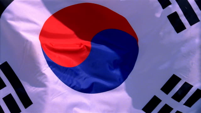 closeup of flag of the south korea waving in wind - formato video mpeg video stock e b–roll