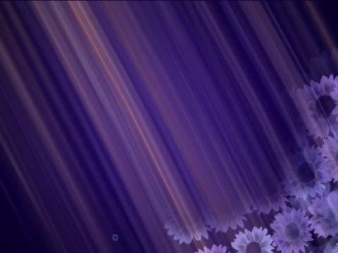 vidéos et rushes de close-up of flowers spinning on a blue background - étamine