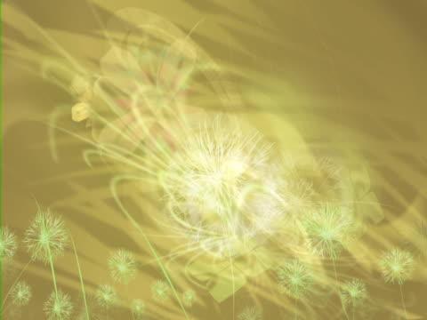 close-up of flowers - partiell lichtdurchlässig stock-videos und b-roll-filmmaterial
