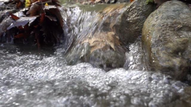 nahaufnahme der fließenden flussfront - bach stock-videos und b-roll-filmmaterial