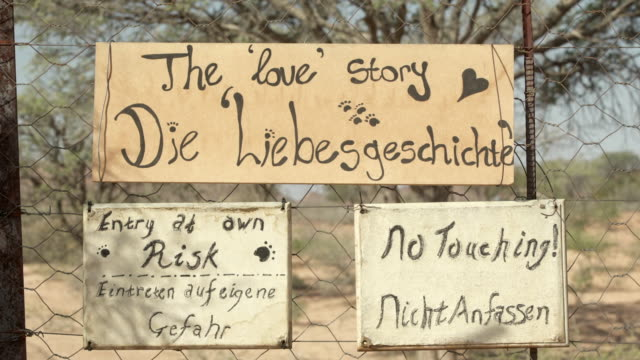 close-up of handwritten sign boards on chainlink fence at zoo - etosha national park, namibia - placard stock videos & royalty-free footage