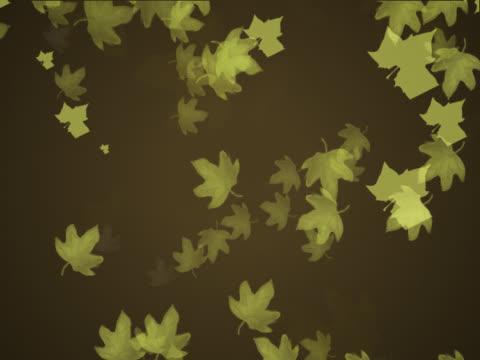 vidéos et rushes de close-up of leaves spinning - fondu d'ouverture