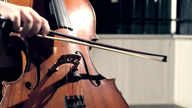 close-up of musician playing double bass - string instrument stock videos and b-roll footage