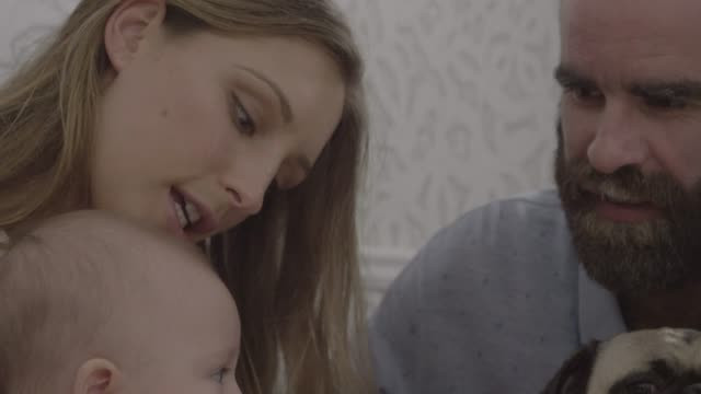 vidéos et rushes de close-up of parents with baby girl and pug in bathroom - salle de bains
