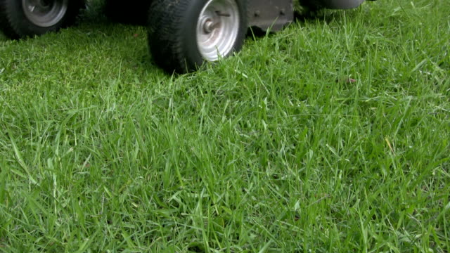 close-up of ride-on lawn mower with grass cuttings scattering - blade stock videos & royalty-free footage