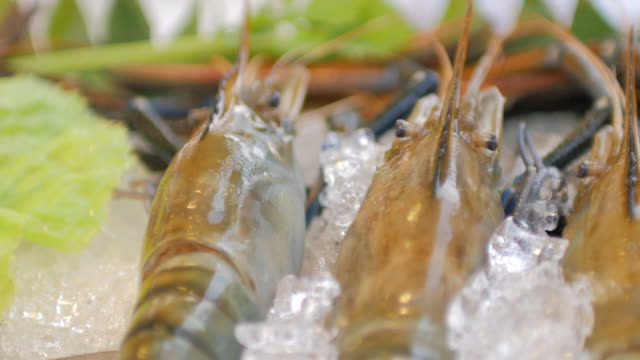Close-up of River Prawn and Fresh seafood on Ice , Panning shot , 4k(UHD)