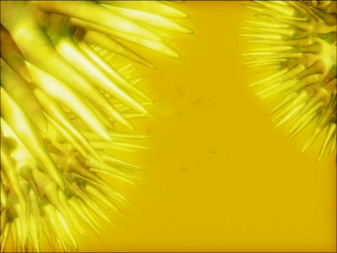 close-up of spiked spheres spinning - appuntito video stock e b–roll