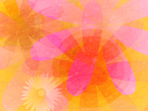 vidéos et rushes de close-up of spinning flowers - étamine