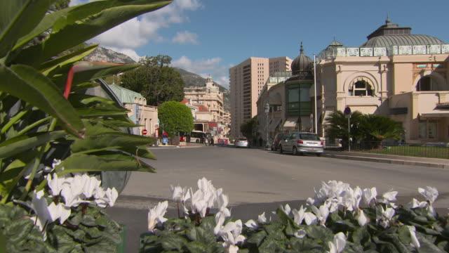 close-up of white flowers on roadside against casino café de paris in city against sky during sunny day - monte carlo, monaco - 固定撮影点の映像素材/bロール
