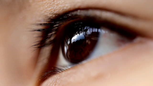 Close -up of 女性の目