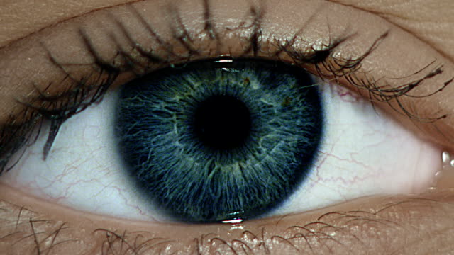 close-up of woman's eye. zoom in - blue eyes stock videos and b-roll footage