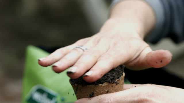 close-up of woman's hand smoothing mound of soil in seed pot - community garden stock videos & royalty-free footage