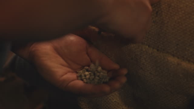 close-up of worker removing coffee beans from sack - bean stock videos & royalty-free footage