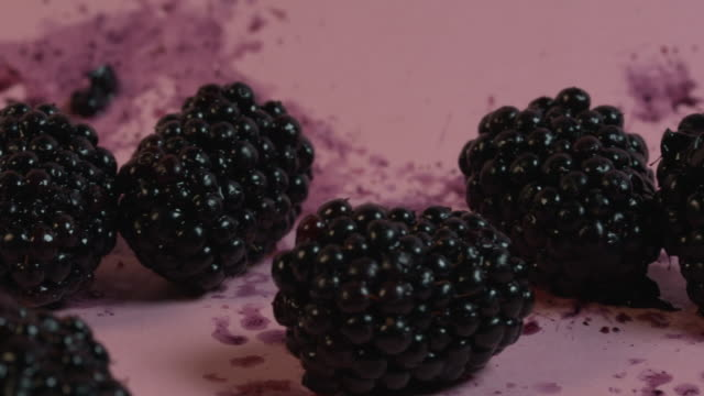 close-up panning shot across splattered, semi-crushed blackberries on a plain pink background. - stained stock videos & royalty-free footage