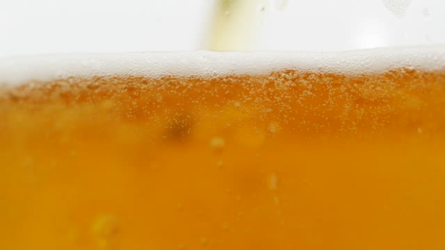 close-up pouring beer into a mug on white background - frothy drink stock videos & royalty-free footage