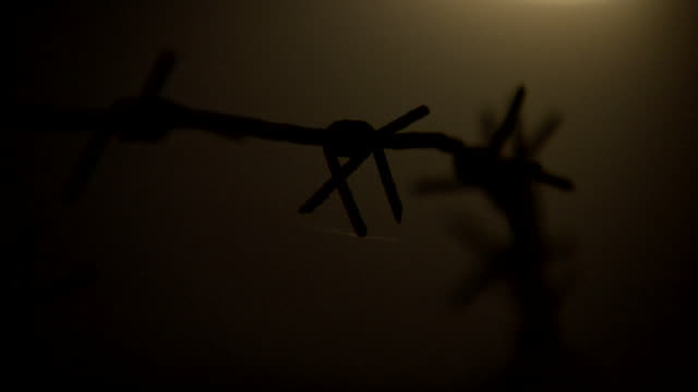 close-up pull focus over barbed wire against the yellow light of the moon. - trench stock videos & royalty-free footage