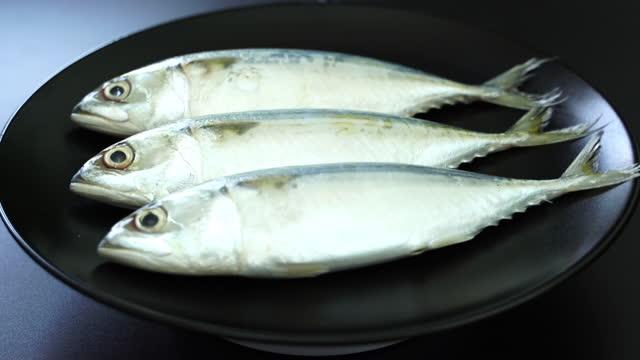 サバの魚を回転させるクローズアップ - 獲った魚点の映像素材/bロール