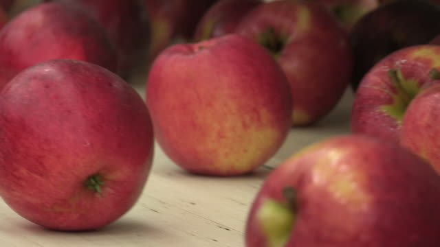 Close-up sequence showing Royal Gala apples on beige conveyor belts at a processing plant in the UK.