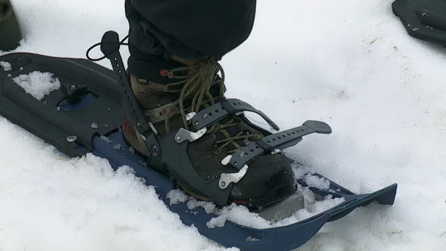 close-up sequence showing the use of snowshoes to tow a sledge across deep snow on the chilkoot trail in the st. elias mountains, british columbia, canada. - bretella video stock e b–roll