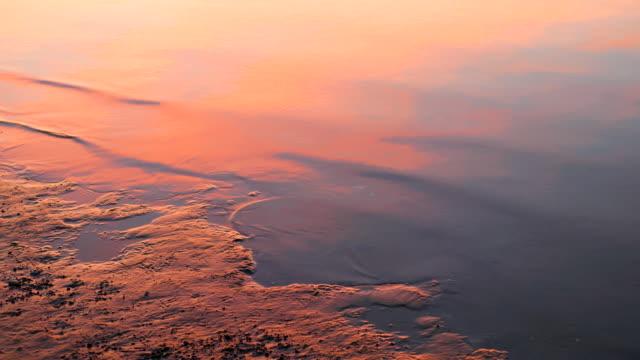 Close-up shoreline at dusk