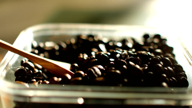 Close-up shot : Checking Quality of Roasted Coffee Beans