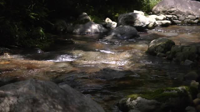 vídeos de stock, filmes e b-roll de close-up shot; mountain stream, gifu, japan - pureza
