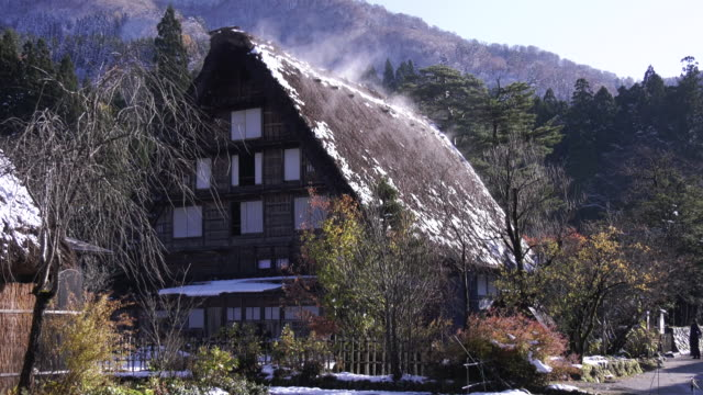 closeup shot of a building in a village of gasshozukuri–style buildings in the shirakawago region of gifu prefecture in central honshu closeup shot... - honshu stock videos and b-roll footage