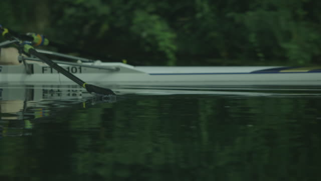 close-up shot of a sculling sports rowing boat gliding past on the calm river cam, cambridge, uk. - oar stock videos and b-roll footage