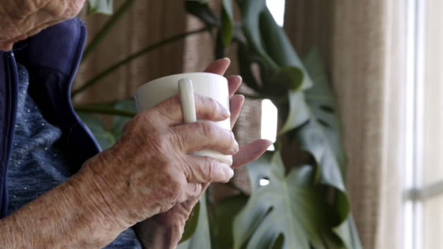 close-up shot of an elderly senior caucasian woman's hands holding a coffee or tea cup indoors looking out the window in the summer - mug stock videos & royalty-free footage