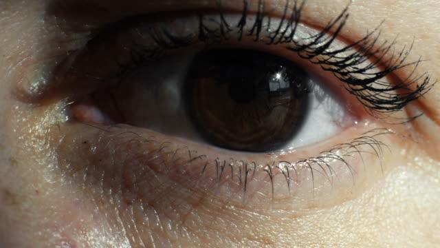 vídeos de stock, filmes e b-roll de foto de close-up do olho - íris olho