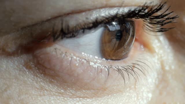 close-up shot of an eye - man blinking stock videos & royalty-free footage