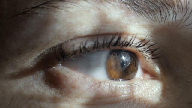 close-up shot of an eye - cornea stock videos & royalty-free footage