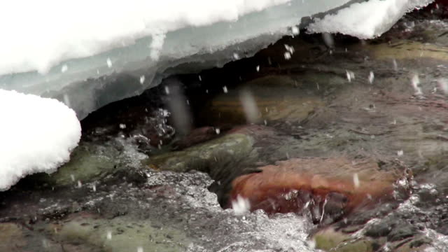 closeup shot of brightly color rocks on river bottom near ice covered bank with snow flakes hitting waters surface. - glacier national park us stock videos and b-roll footage