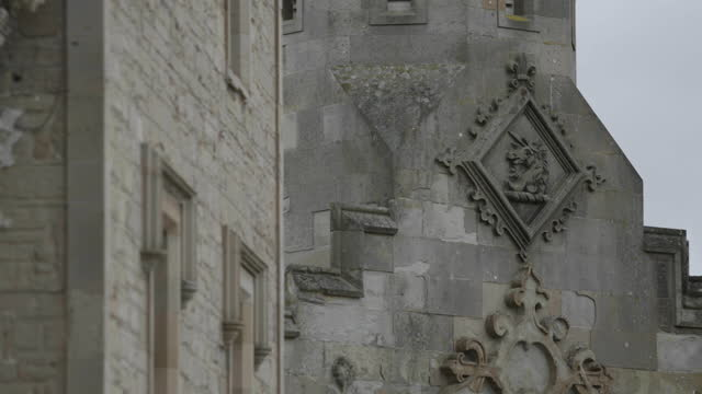 close-up shot of carved unicorn head on the facade of floors castle - stone object stock videos & royalty-free footage