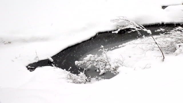 closeup shot of small pond surrounded by snow covered banks during heavy puffy snow fall snow storm. - glacier national park us stock videos and b-roll footage