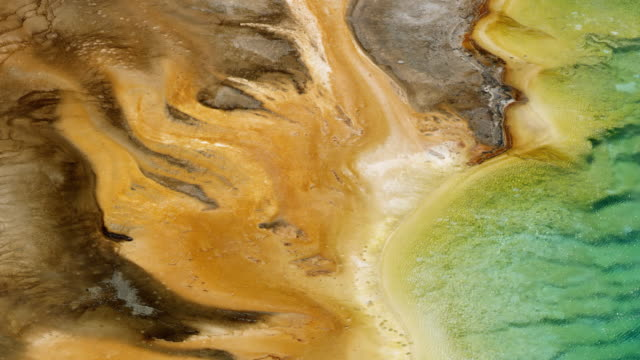 close-up shot of the edge of the grand prismatic spring - イエローストーン国立公園点の映像素材/bロール