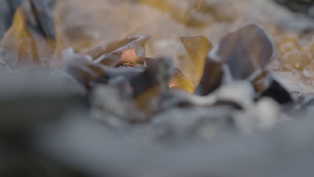 close-up shot of tongs adjusting burning charcoal in a forge - blacksmith stock videos & royalty-free footage
