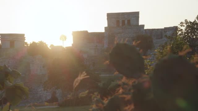 close-up shot of tulum mayan ruins, el castillo temple. quintana roo, mexico - cactus icon stock videos & royalty-free footage