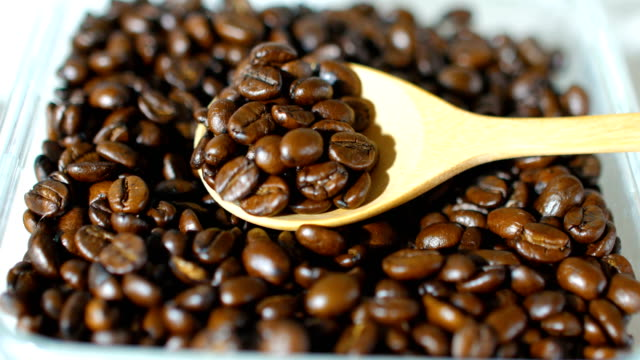 Close-up shot : Roasted Coffee Beans with Cup of Wooden Spoon
