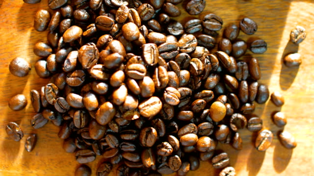 Close-up shot : Roasted Coffee Beans with Sunlight