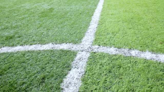 close-up soccer field. - football pitch stock videos and b-roll footage